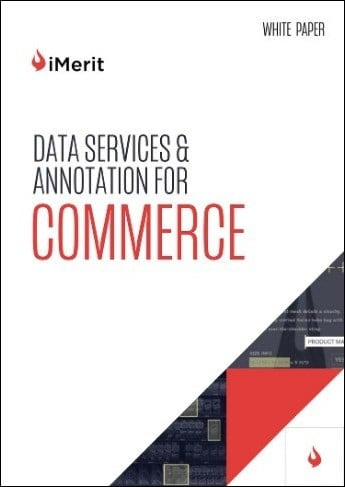 Data Services & Annotation for Commerce