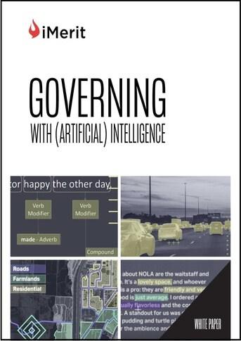 iMerit Government AI White Paper