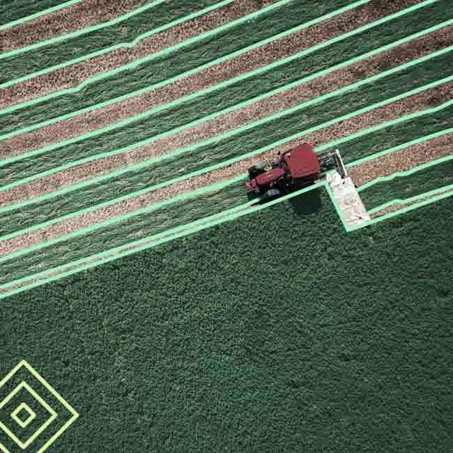 Agricultural AI