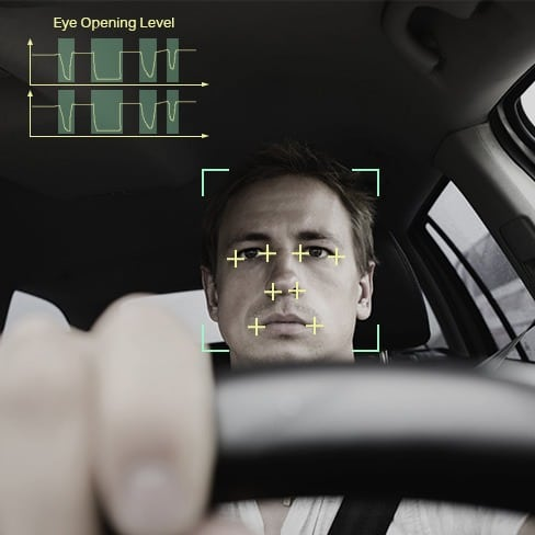 Vehicle-In-Car-Monitoring